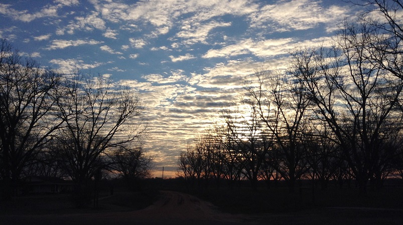 Sunrise over the chapel (lower left) and the Elliot pecan orchard.